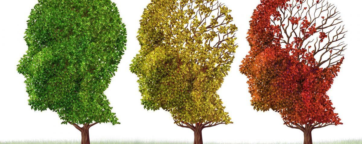 Dementie Symptomen Yorbody Fysiotherapie