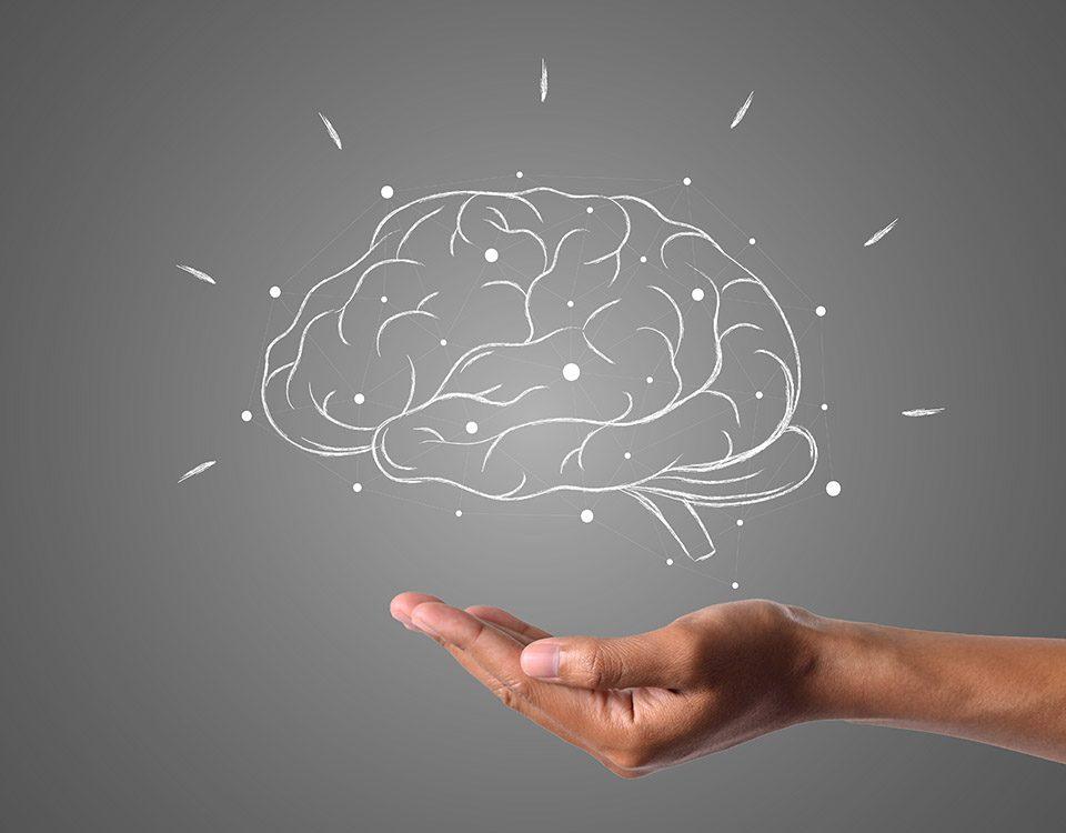 sporten brein